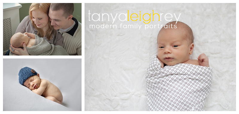 chevy chase newborn photographer