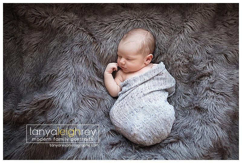 washington-dc-newborn-photographer