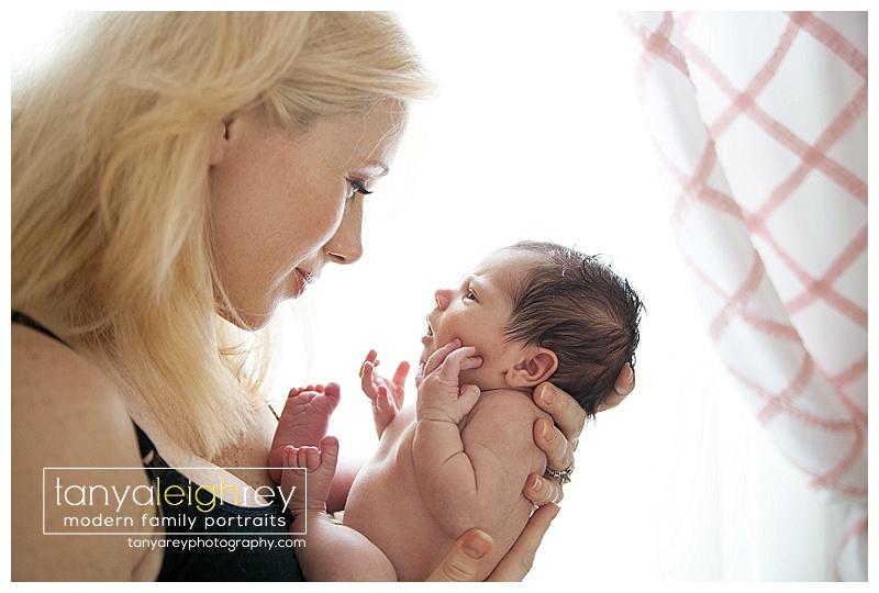 Newborn session alexandria va newborn photographer